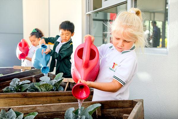 Estudiantes de Jardín de Niños en San Luis Potosí cuidando el Huerto